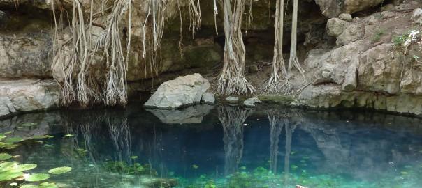 Cenote XBatun 1